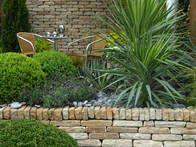 Discover ideas for eye-catching courtyard gardens from the experts at HGTV Gardens. Learn courtyard garden ideas for any budget.