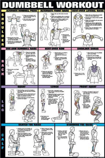 Treino de musculação com halteres 2