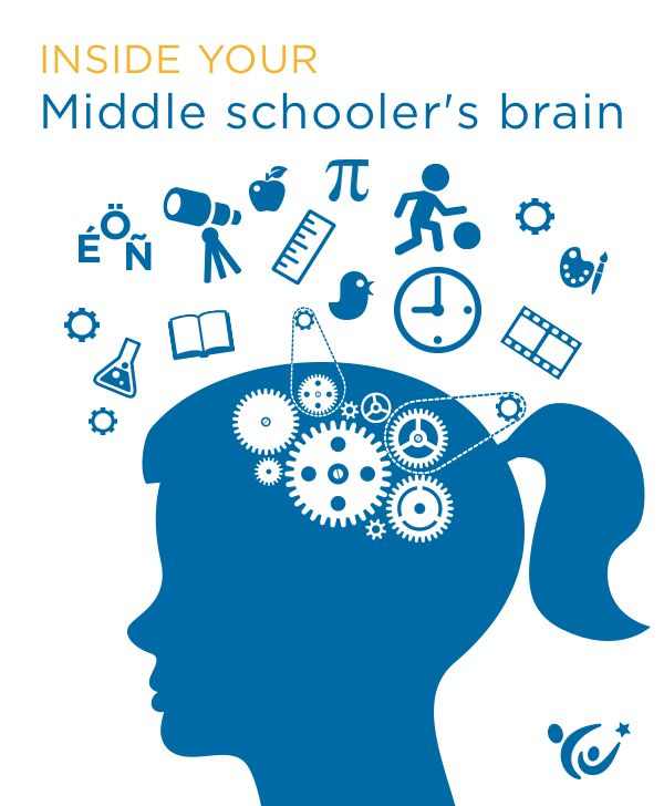 What insights can neuroscience offer parents about the mind of a middle schooler?