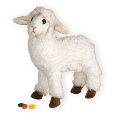 17 best easter gift ideas images on pinterest easter gift easter easter plush toys little lamb toy from wooden soldier this cuddly little lamb is sure to get lots of hugs from your little one negle Images