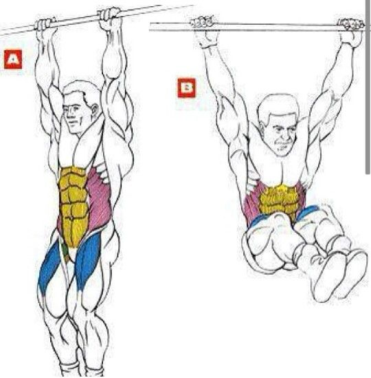 16 best images about Pull ups on Pinterest | Lower backs, Muscle ...