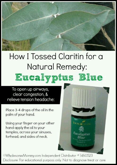 Eucalyptus Blue Young Living Sinus Allergy Essential