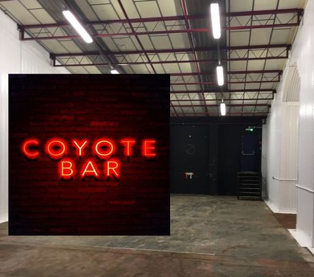 Coyote Ugly movie inspired bar coming to Birmingham - Birmingham Mail