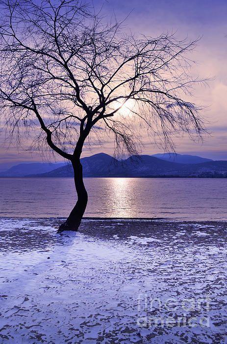 Winter Light at Manitou Beach, Naramata BC Canada - Tara Turner