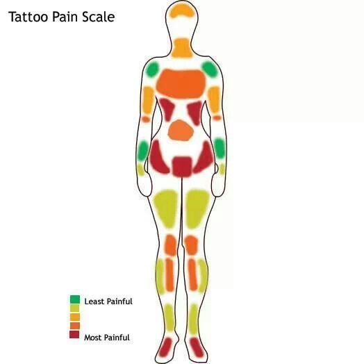 diagram of tattoo pain - Google Search   Ink & piercings ...