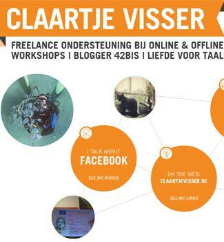 Solliciteren met een Infographic door: Claartje Visser