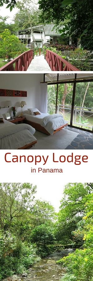 Canopy Lodge in El Valle de Anton, Panama is the paradise for bird watching.