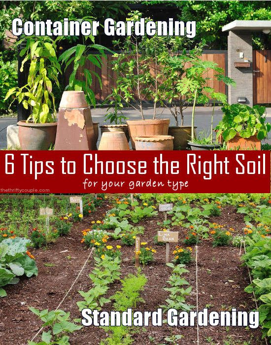 6 Tips to choose the right soil type for your garden. Container gardening vs. traditional gardening or in ground gardening.