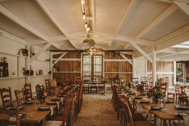 Old Forest School wedding - photography by Danelle Bohane