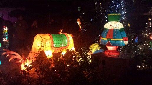 Lanternes de #Metz : Renne et soldat