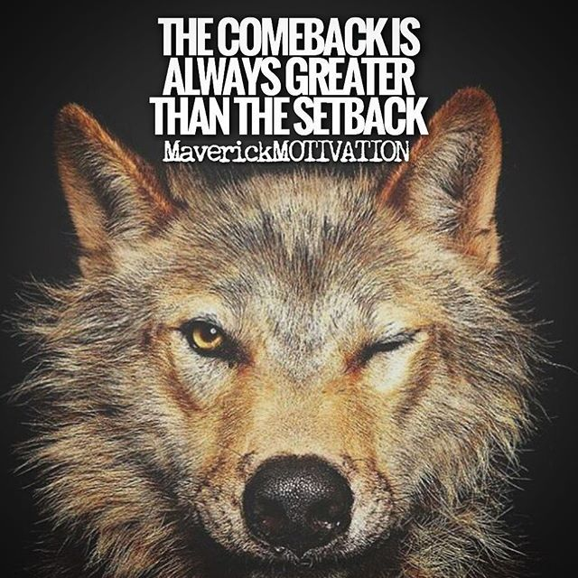 Quotes On Falling And Getting Back Up: Best 25+ Get Back Up Ideas Only On Pinterest