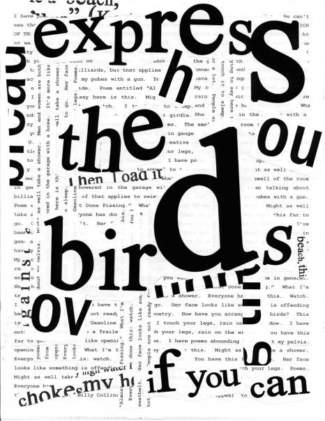 """""""Express the Birds If You Can"""" by Steve Roggenbuck: Central Review Fall 2009"""