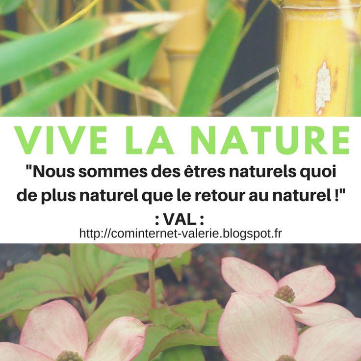 """ComInternet Community Manager Web Designer VAL VANNES MORBIHAN 56 BRETAGNE (naviginternet@orange.fr) Bonjour :: """"Tu peux mettre ce visuel sur ton #WebSocialMedia !! """"Nous sommes des êtres naturels quoi de plus naturel que le retour au naturel : VIVE LA NATURE !!"""" Valérie Val #CANVA #VISUEL #WEBPHOTO #WEBVISUEL (( https://www.canva.com/naviginternet ))"""