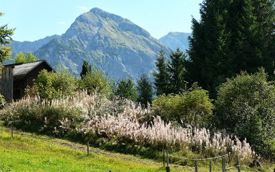 Allgäu kurze Touren Oberstdorf Sonthofen Hindelang Blaichach