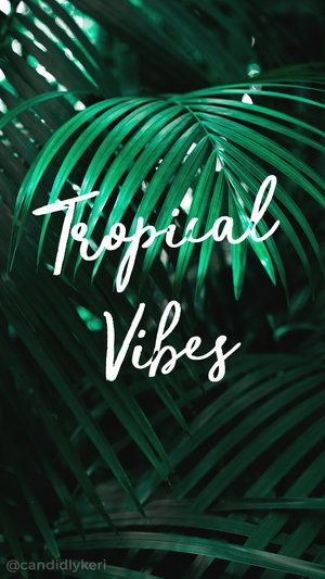 1086 best free wallpaper backgrounds downloads images on pinterest tropical vibes summer palm trees palms typography inspirational motivational quote background wallpaper you can download for voltagebd Choice Image
