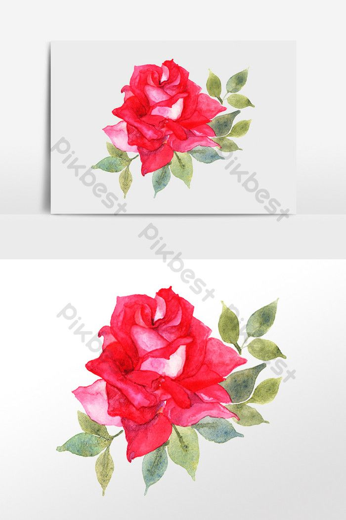 Watercolor Red Rose Png Images Psd Free Download Pikbest Watercolor Red Red Rose Png Red Rose Flower