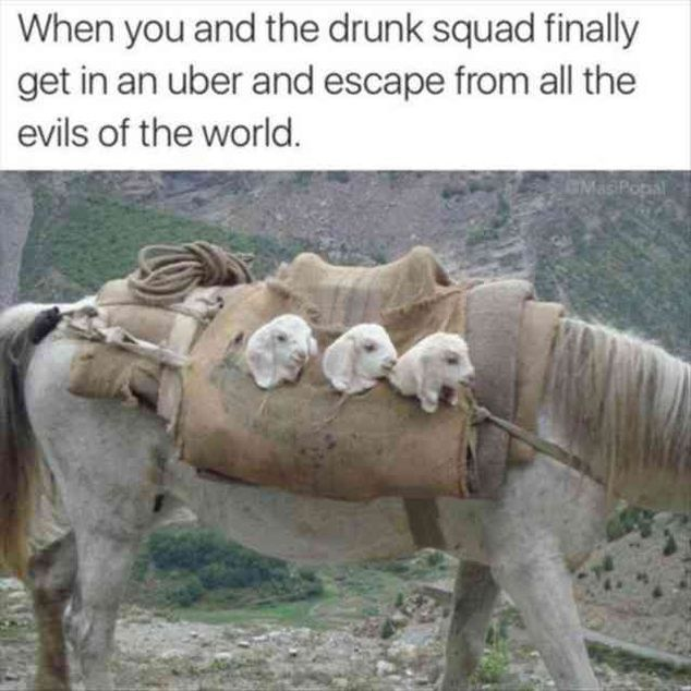 125 Funny Pictures For Today (#98)