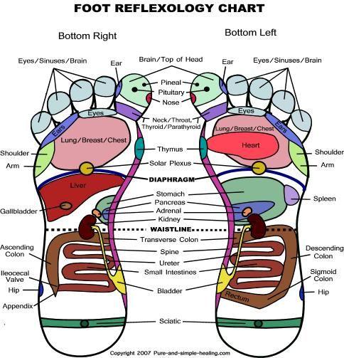Alternative to advil?: Stuff, Essential Oils, Foot Massage, Argan Oil, Things, Foot Chart, Health, Random Acting, Foot Reflexology Charts