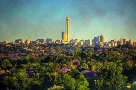 Johannesburg - One of the cities with the MOST trees in the world!!!
