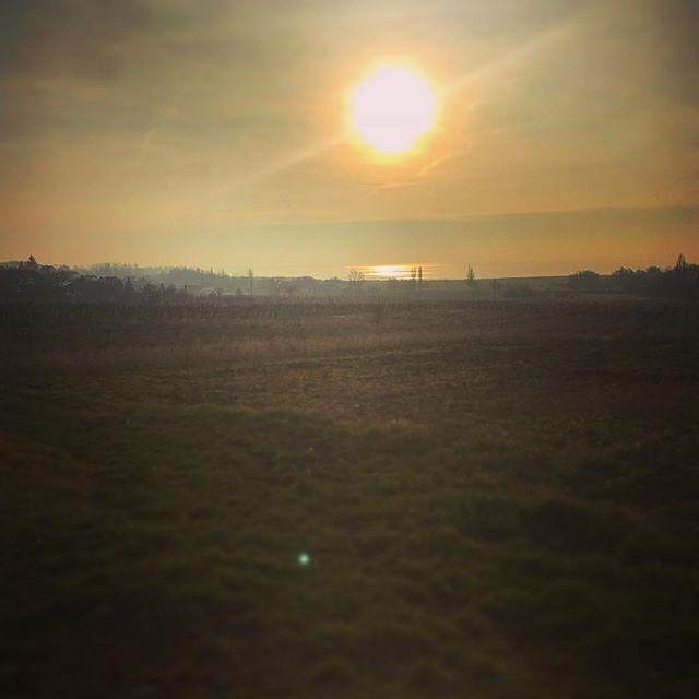 Lake Balaton tomorrow morning. A Balaton ma reggel munkába menet. #fivesneakers #wecollectmemories