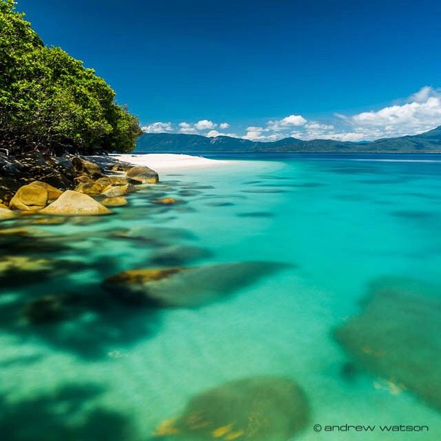 Fitzroy Island Queensland: 236 Best Tropical North Queensland Images On Pinterest