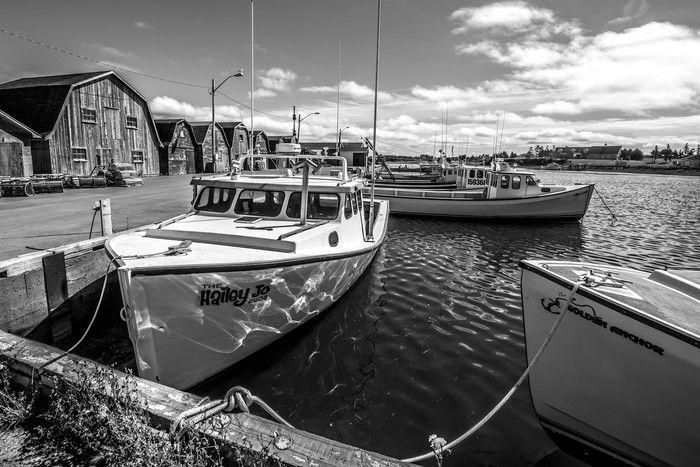 Hailey Jo - Prince Edward Island