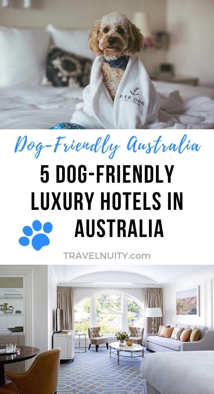 5 Dog Friendly Luxury Hotels Around Australia Dog Friends Oceania Travel Dog Hotel