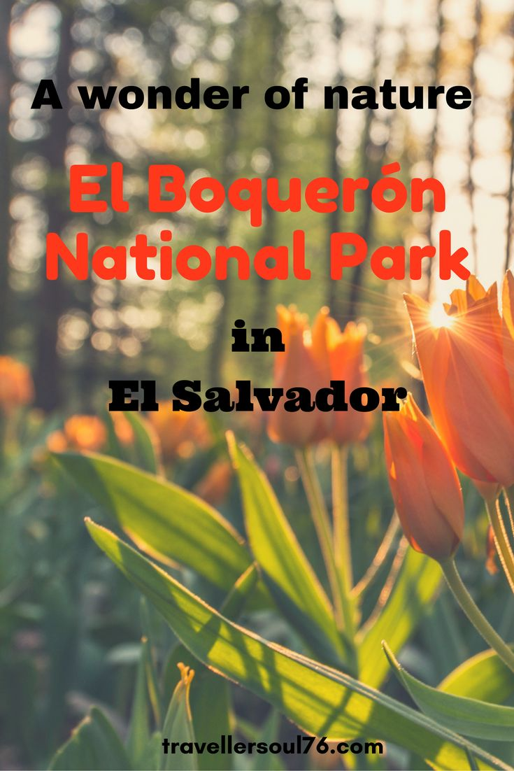 One of El Salvador's most stunning National Parks and easily accessible from the Capital, San Salvador, is a must for nature lovers. Come along for a hike!