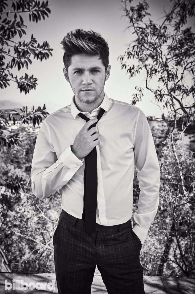 Картинки по запросу Niall's photoshoot Flamingos Notion Magazine