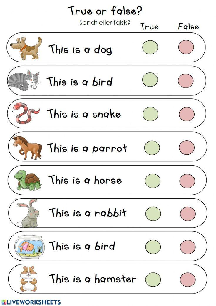 Pin On Worksheets Kindergarten literacy activities online