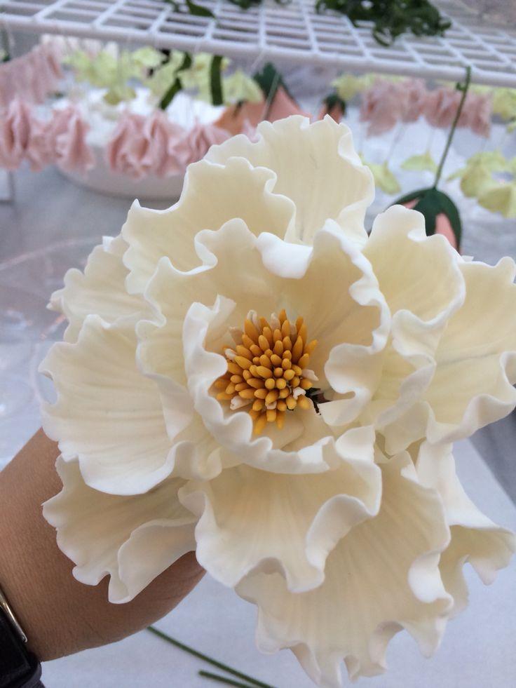 Ben çok sevdim bu şakayık çiçeğini#ayşeyaman #şekerdençiçekler bembeyaz haliyle de güzel benim çiçeğim#succulent #sugarfondant