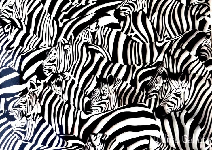 zebre-suhaida-ludovic