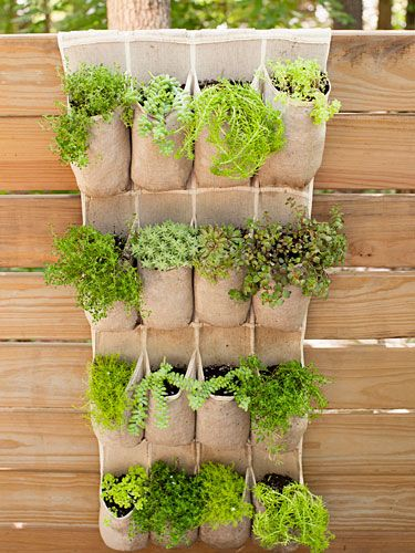 Hang an over-the-door shoe holder on a fence and tuck herbs into the compartments for a fun twist on the vertical planter. #upcycle