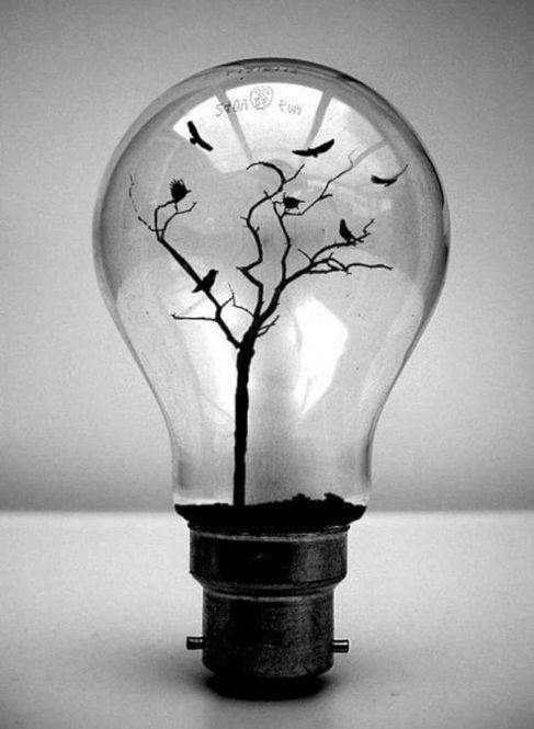 小さい木の枝を入れて、木に見立てたもの。鳥はどうやって浮かせてるのでしょうか…。