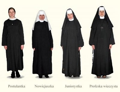 Religious orders and congregations in the world: Albertine