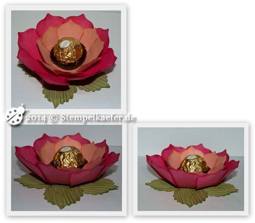 Rose mit den Floral Frames
