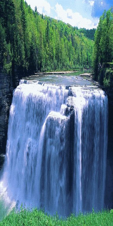 The waterfall Angel (height 979 m) drops over the edge of the Auyantepui mountain in the Canaima National Park, a UNESCO World Heritage site in the Gran Sabana region of Bolívar (Federal) State, (Bolivarian) Republic of Venezuela. [click on the photo to see the water flowing]