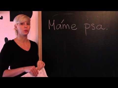 Video pomáhá při výuce cizích jazyků. – Jazyková škola Plzeň – Perfect World