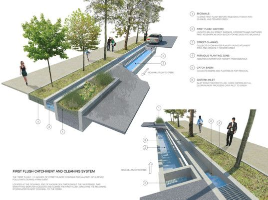 How rainwater gardens could vastly improve water quality in urban environments