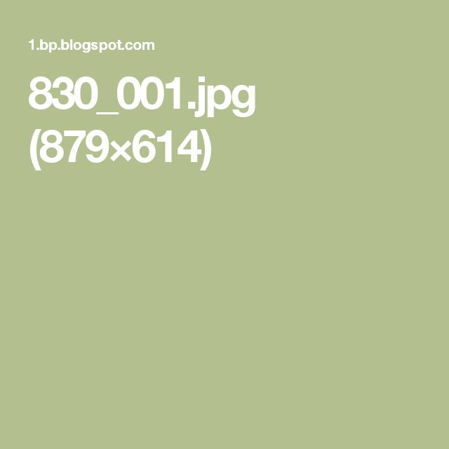 830_001.jpg (879×614)