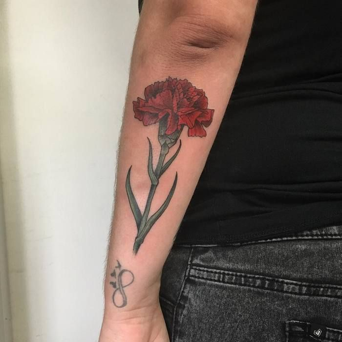 25 best ideas about carnation tattoo on pinterest for Red carnation tattoo