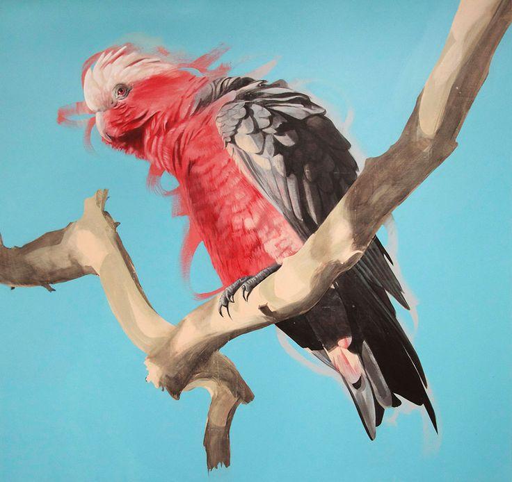 Galah 190cm x 180cm,  Acrylic on Canvas,  Geoffrey Carran 2014