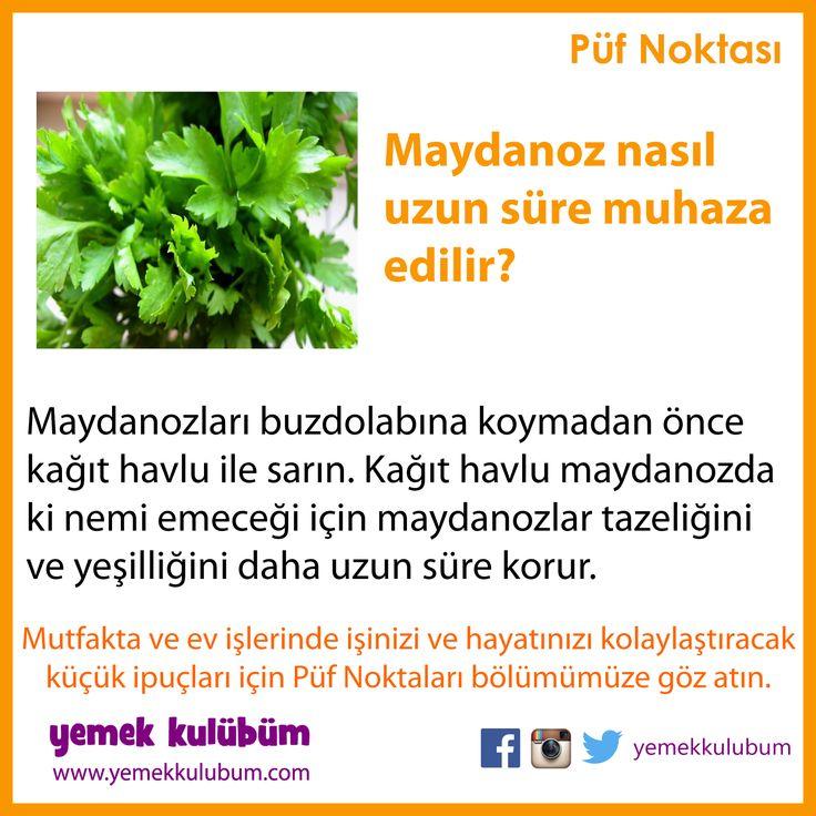 GIDALARI SAKLAMA YÖNTEMLERİ : Maydanoz uzun süre nasıl muhafaza edilir? http://yemekkulubum.com/puf-noktasi-liste/gidalarin-saklanmasi-ile-ilgili-puf-noktalari #maydanoz #gıdasaklama #gıdamuhafaza #havlu #kağıthavlu #parsley