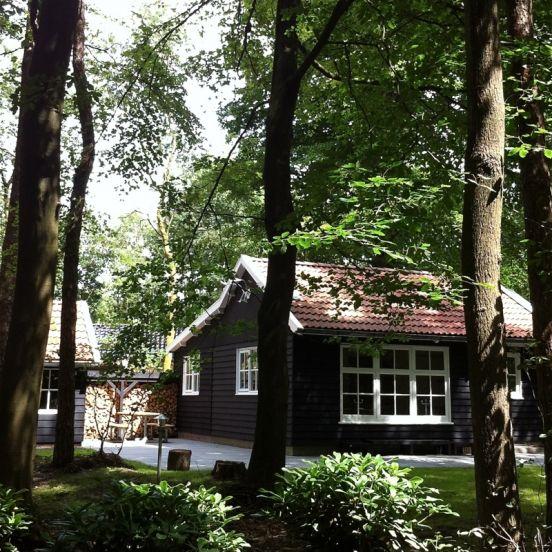 Een hippe vakantiewoning in het bos bij Appelscha in Friesland, midden in de natuur waar je heerlijk kunt fietsen. Geschikt voor gezinnen met kinderen.