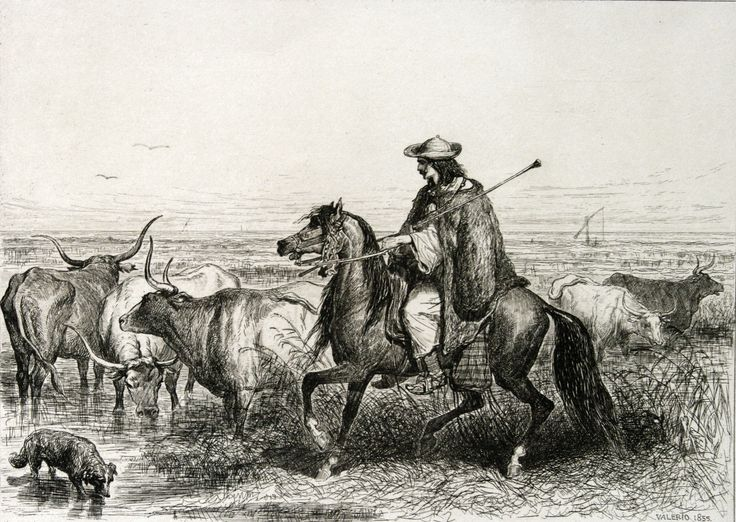 Berger Valaque des environs de Gross-Wardein, 1855