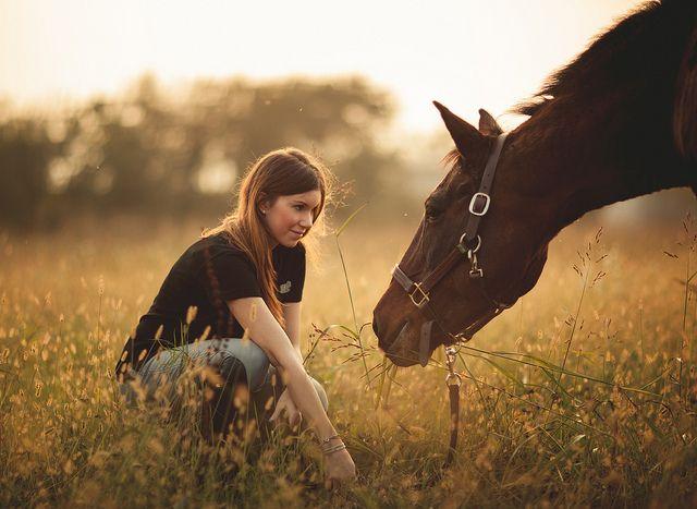 #lovehorses #horse #fashion
