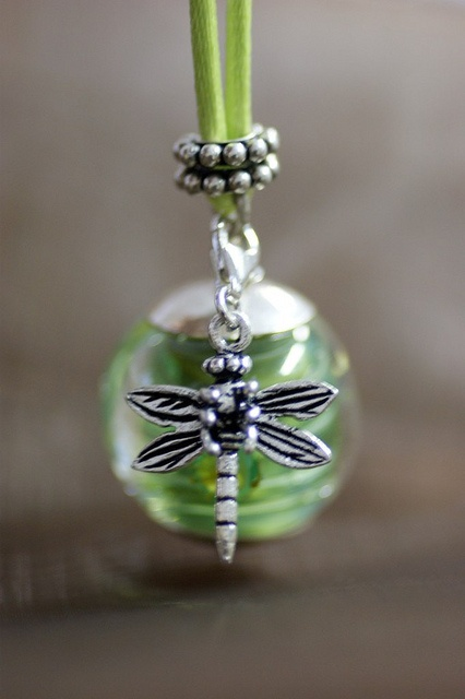 Oooh! Dragonflies carry spirits!!