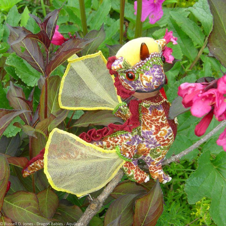 Aquilegia Baby Dragon (1) by russelldjones