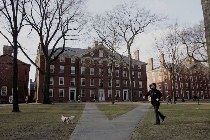 Harvard Cancels Men's Soccer Season Over 'Scouting Report' Assessing Female Soccer Players' Hotness