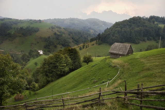 Moeciu, Romania (30 km from Brasov)